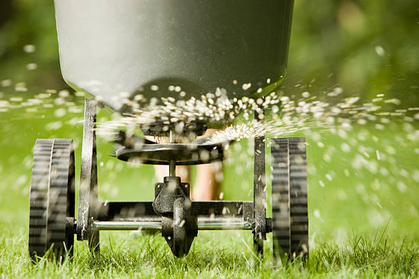 irrigation with grass seed
